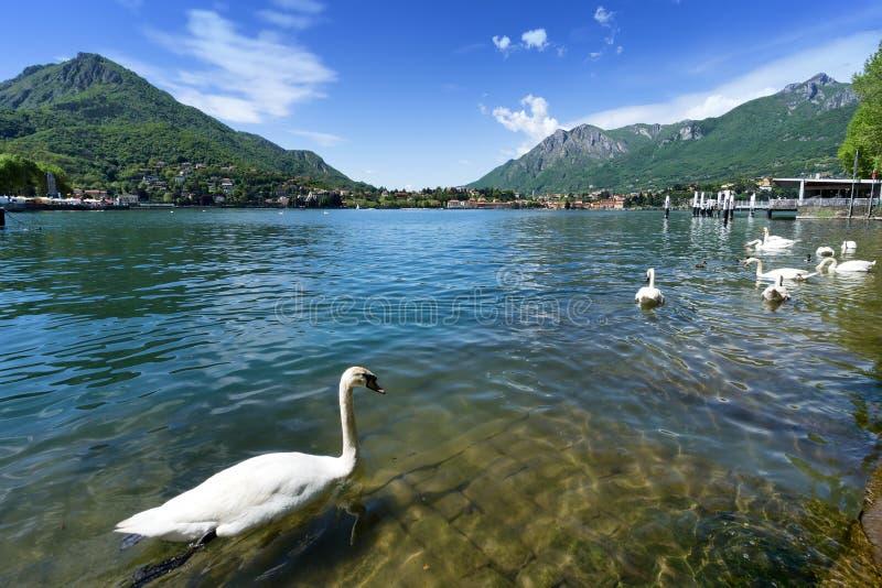 Lago Como de Lecco, Italia. fotos de archivo