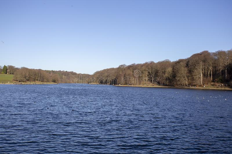 Lago con el paisaje de alrededor de árboles y de colinas imagenes de archivo