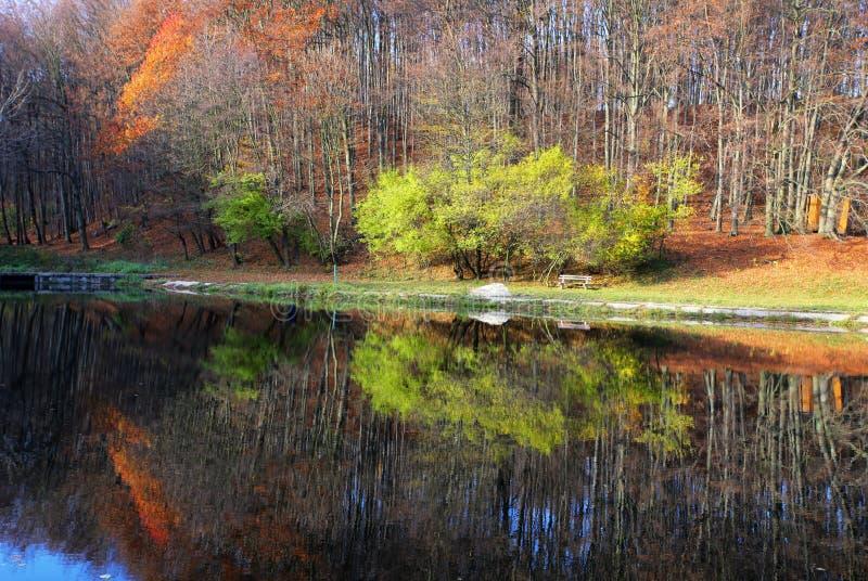 Lago con el reflectio del bosque del otoño, chata de Zochova imagenes de archivo