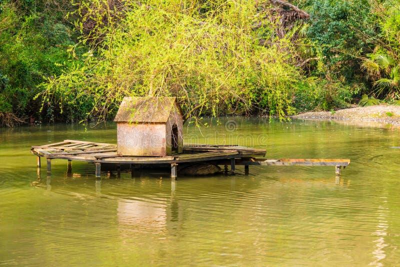 Lago con la casa para los swawns fotografía de archivo