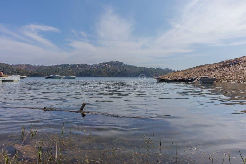 Lago con la flotación de madera del tronco imágenes de archivo libres de regalías