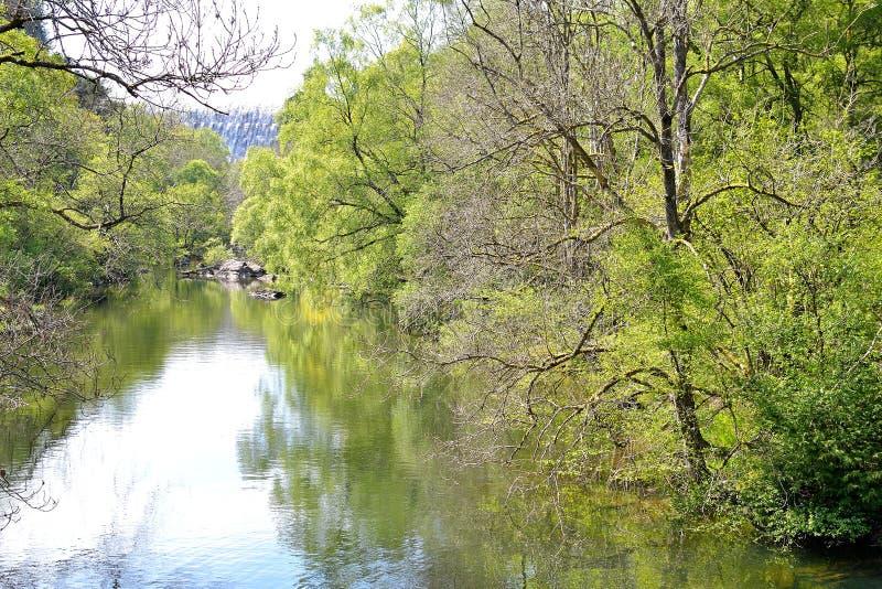 lago con la riflessione degli alberi sul fondo della diga di Elan Valley immagine stock libera da diritti