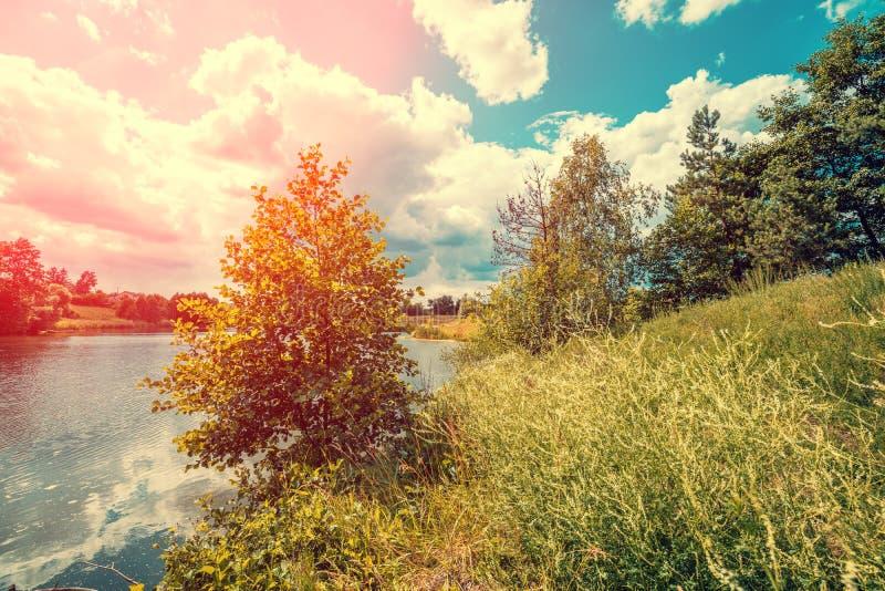 lago con los árboles en la orilla fotos de archivo libres de regalías