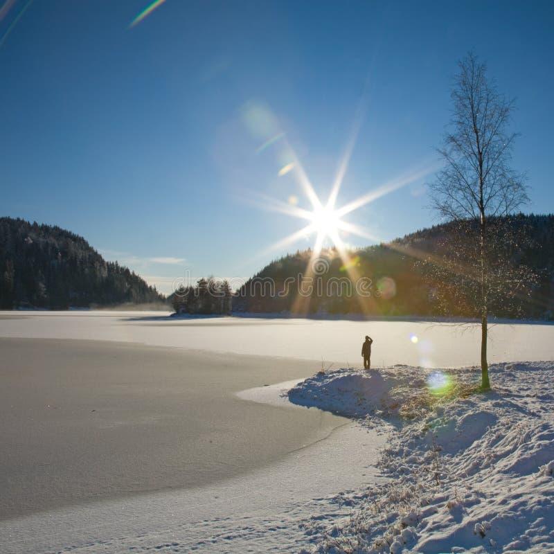 Download Lago congelado imagen de archivo. Imagen de lago, hielo - 7284847