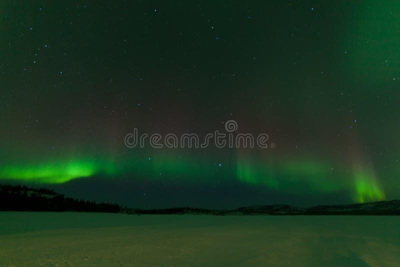 Lago congelado aurora borealis Laberge Yukon Nightsky imagens de stock royalty free