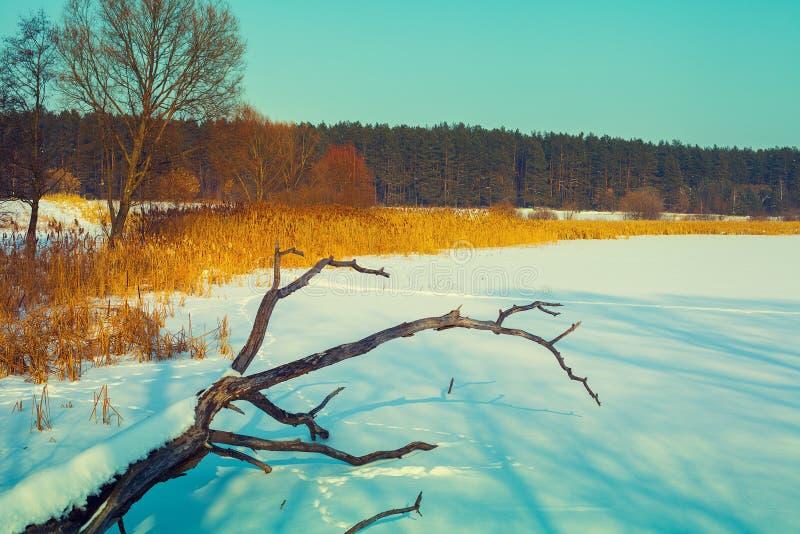 Lago congelado coberto com a neve fotos de stock royalty free