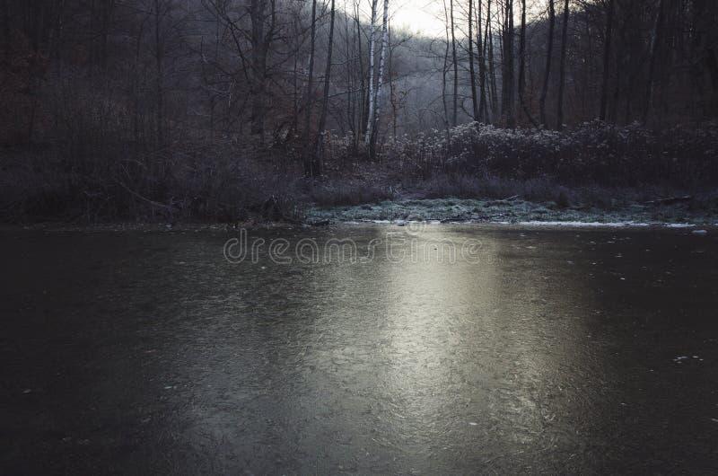 Lago congelado en bosque en invierno frío fotografía de archivo