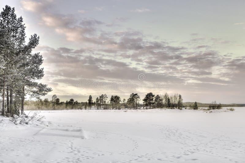 Lago congelado en Inari, Finlandia fotografía de archivo