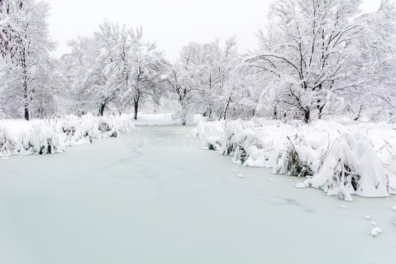 Lago congelado invierno hermoso Sofía, Bulgaria imágenes de archivo libres de regalías