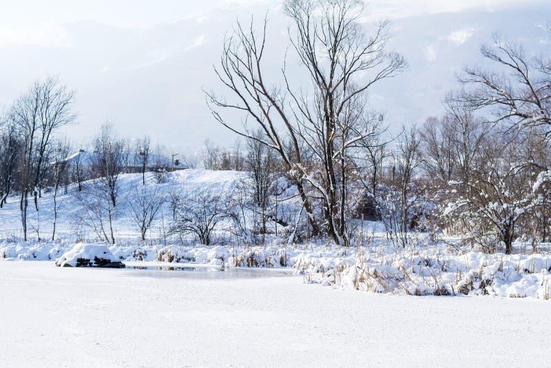Lago congelado invierno hermoso Sofía, Bulgaria fotografía de archivo