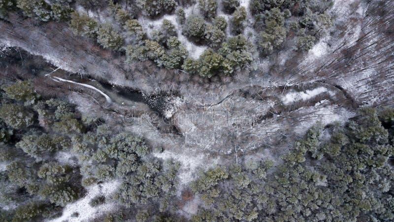 Lago congelado na fotografia aérea da floresta do inverno com quadcopter foto de stock royalty free