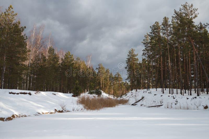 Lago congelado no inverno na floresta imagem de stock