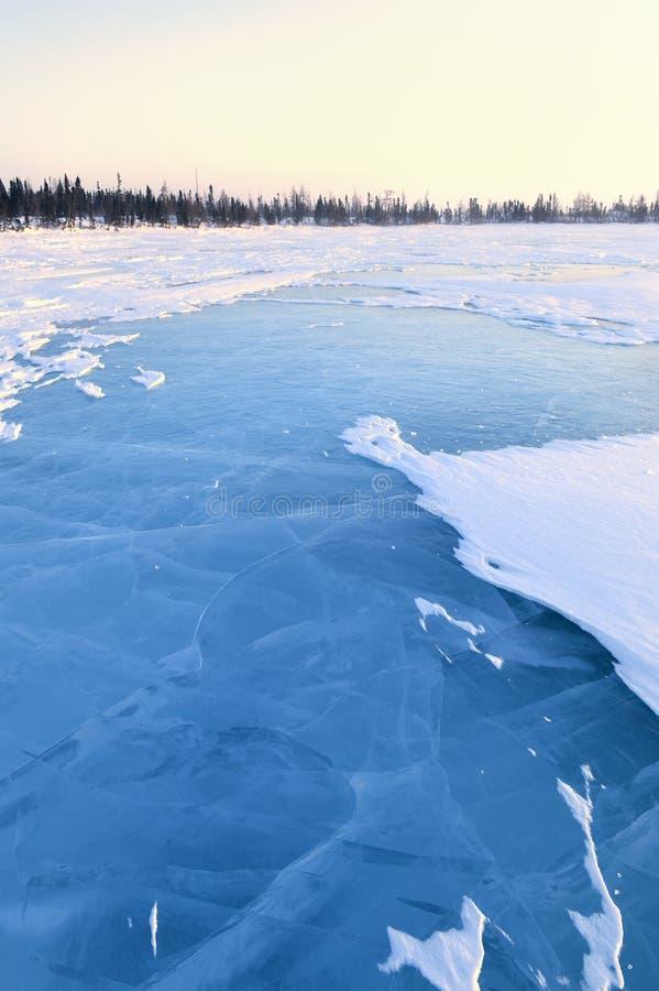 Lago congelato con la foresta boreale immagini stock