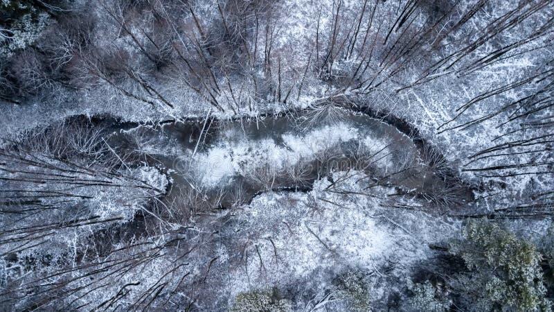 Lago congelato nella fotografia aerea della foresta di inverno con quadcopter fotografia stock