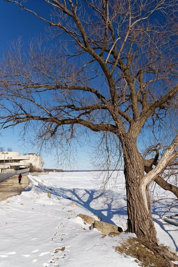 Lago coperto dalla neve Monona a Madison Wisconsin fotografia stock
