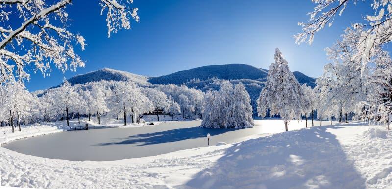 Lago coperto di ghiaccio durante l'inverno freddo fotografia stock libera da diritti