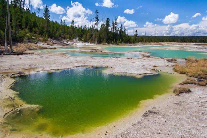 Lago crackling em Norris Geyser Basin no parque nacional Wyoming EUA de Yellowstone foto de stock