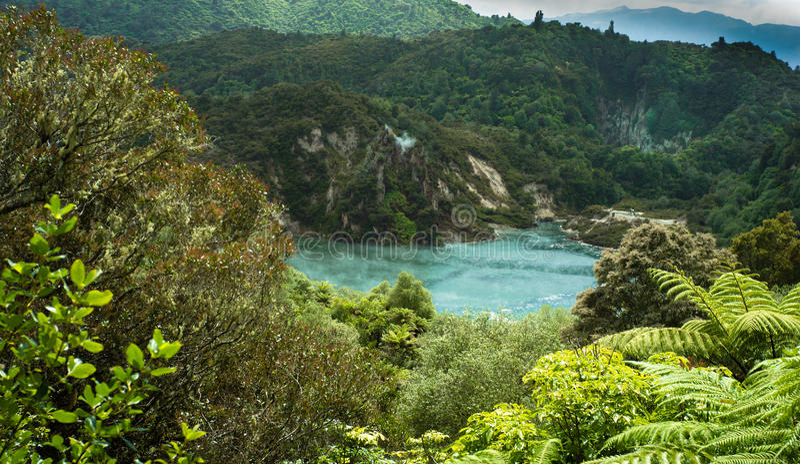 Lago crater - Waimangu fotos de stock royalty free