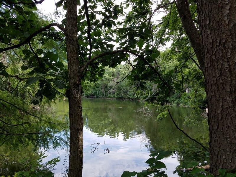 Lago creek del sale immagini stock