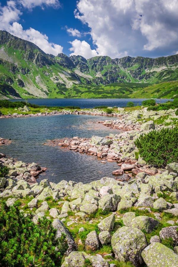 Lago cristalino en las montañas fotografía de archivo