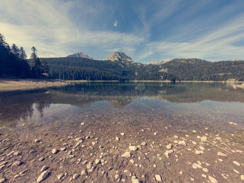 Lago cristallino della foresta circondato con i pini fotografia stock