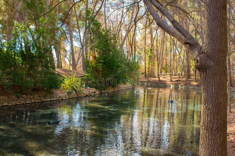 Lago cristallino nel parco di San Vicente fotografie stock