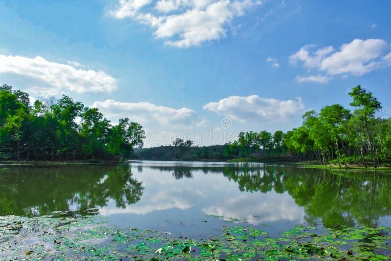 Lago da água dentro do jardim de chá foto de stock royalty free