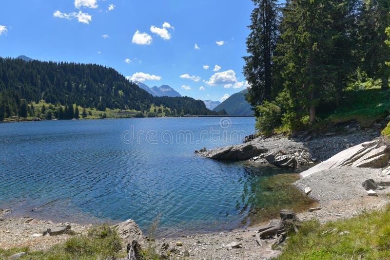 lago da montanha alta, cercado por pinheiros foto de stock royalty free
