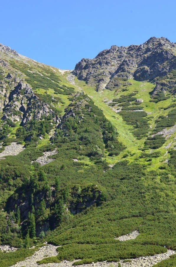 Lago da montanha de Popradske Pleso na cordilheira alta em Eslováquia - um dia de Tatras de verão ensolarado bonito em uma caminh foto de stock royalty free