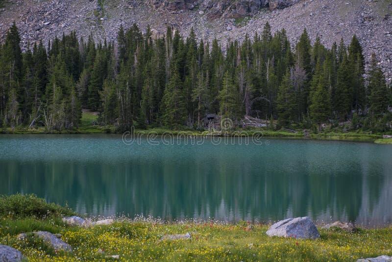 Lago de la alta montaña fotos de archivo libres de regalías