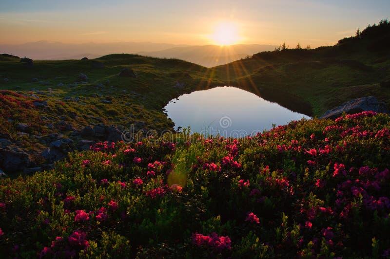 Lago de la montaña de la mucha altitud en el amanecer, en idílico fotos de archivo libres de regalías