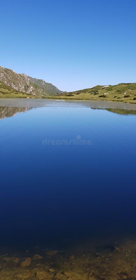 Lago de la montaña del cielo de la vaca fotografía de archivo