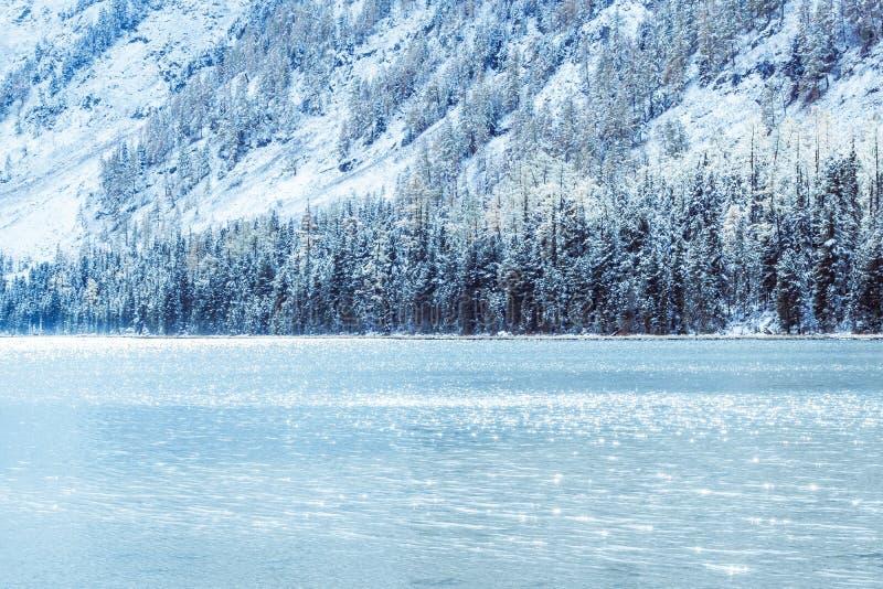 Lago de la montaña del invierno con los árboles de pino nevados en la orilla fotos de archivo