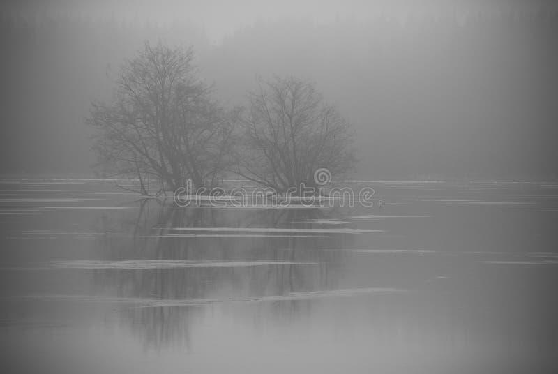 Lago de las impresiones del invierno y colección de los árboles fotos de archivo