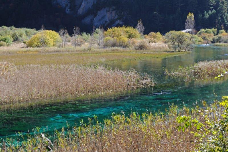 Lago de lingüeta Jiuzhaigou fotografia de stock