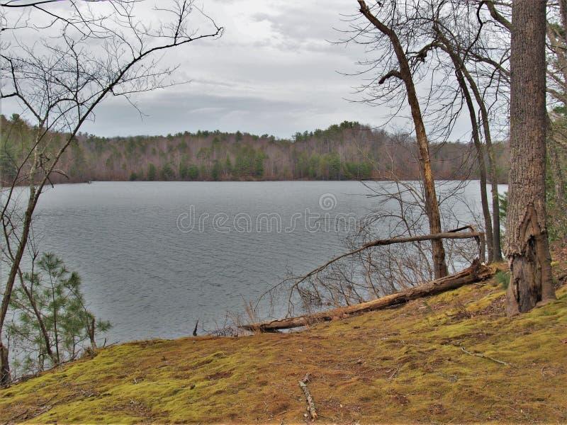Lago de pedra feericamente em Virgínia imagem de stock