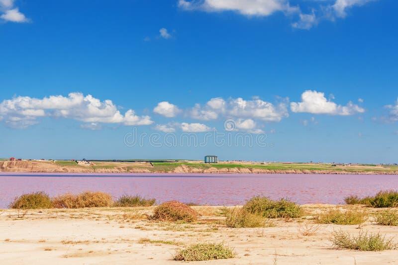 Lago de sal cor-de-rosa Masazirgol em Azerbaijão fotos de stock