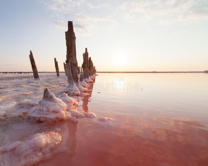 Lago de sal cor-de-rosa, onde o sal é minado o alimento fotos de stock