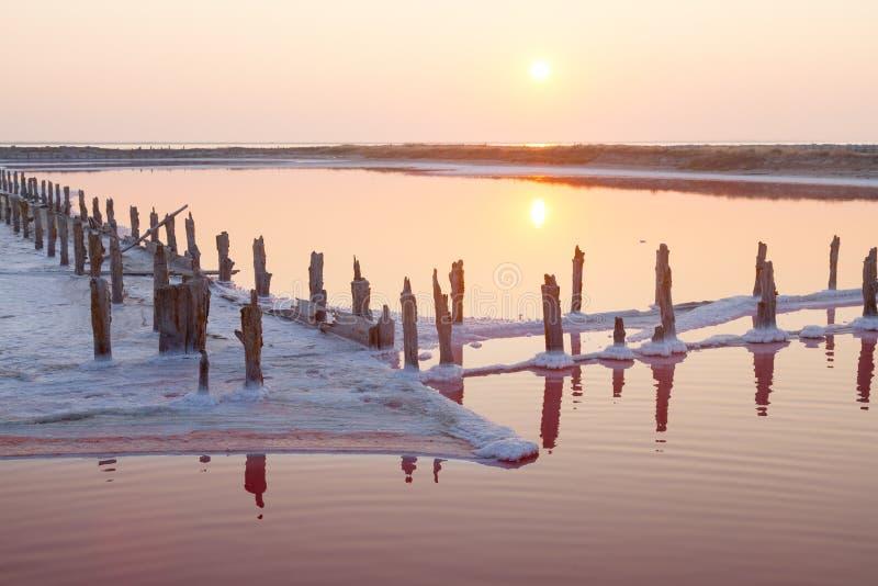 Lago de sal cor-de-rosa, onde o sal é minado o alimento foto de stock royalty free