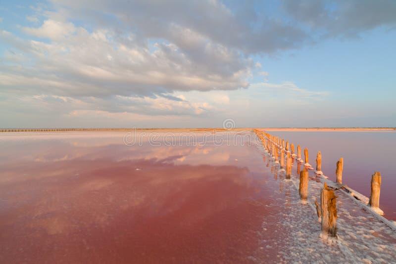 Lago de sal cor-de-rosa, onde o sal é minado o alimento fotos de stock royalty free