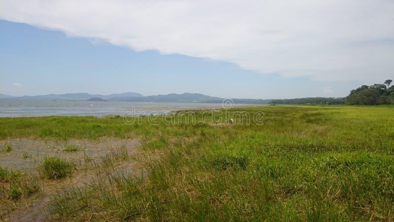 Lago de yojoa 免版税库存照片