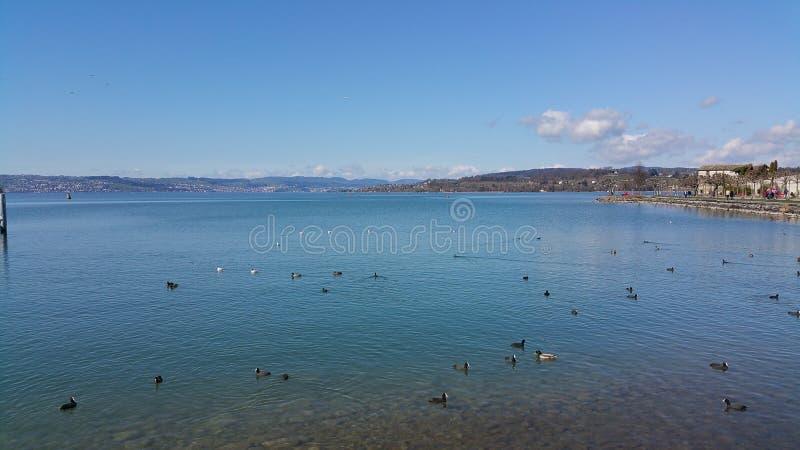 Lago de Zurich foto de archivo