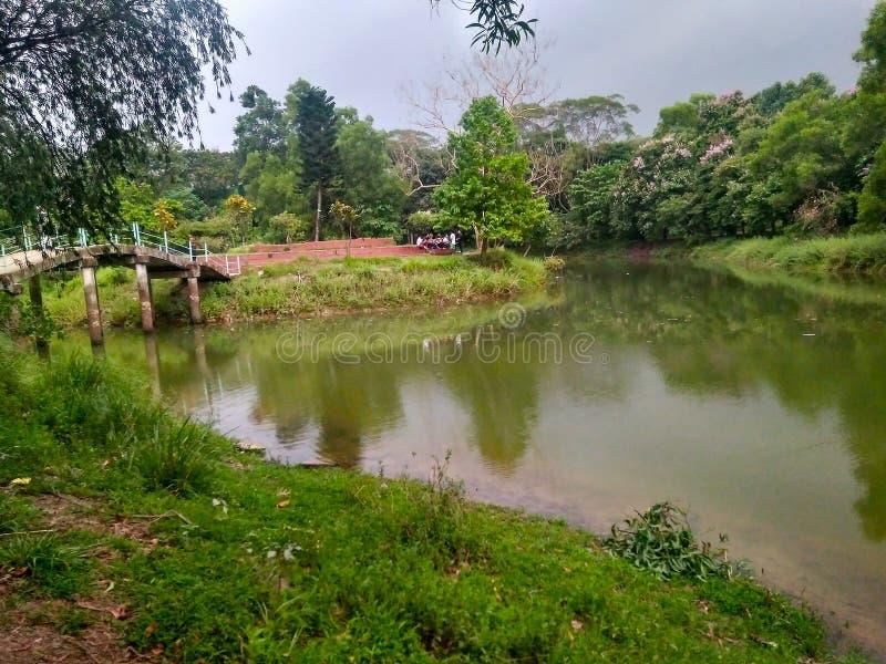 lago del giardino botanico fotografia stock