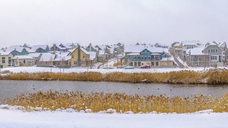 Lago del marco del panorama con la orilla herbosa y nieve cubierta en un día de invierno nublado imágenes de archivo libres de regalías