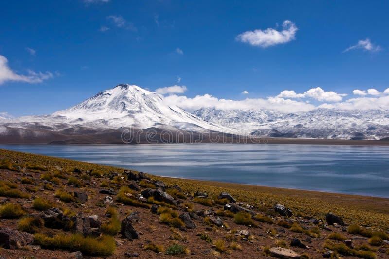 Lago del miscanti de Laguna con el volcán fotos de archivo