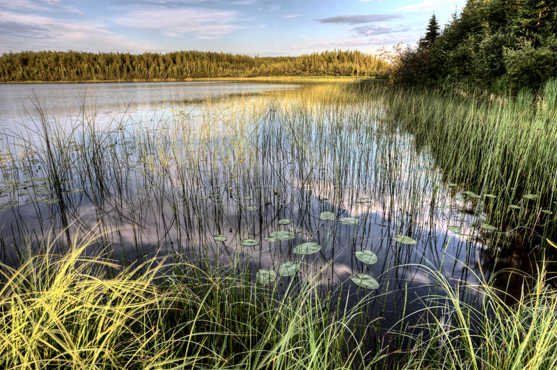 Lago del Nord saskatchewan fotografia stock