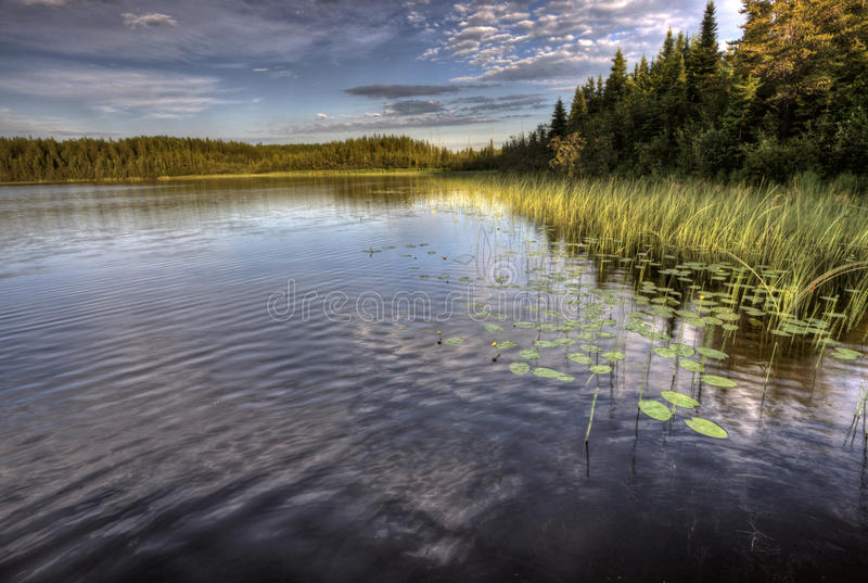 Lago del Nord saskatchewan immagine stock libera da diritti