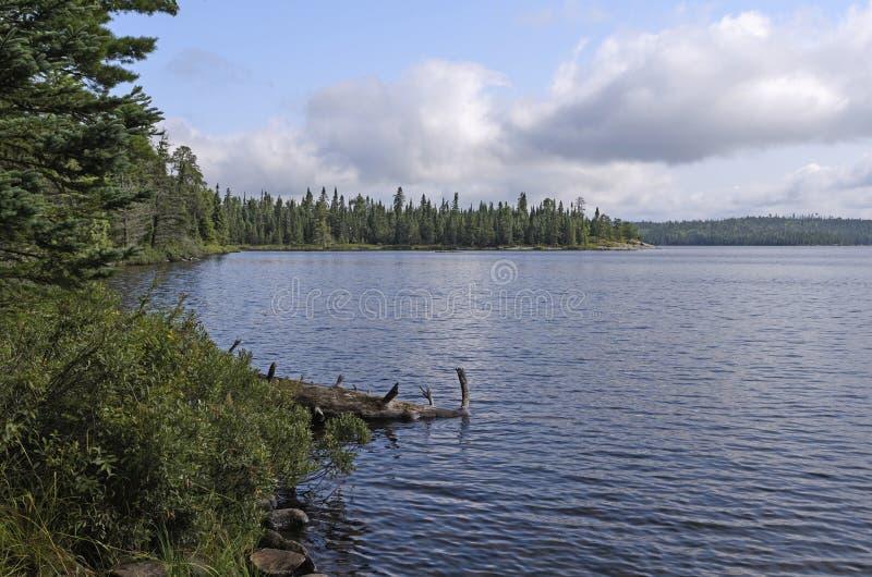 Lago del norte woods en un día de verano reservado imágenes de archivo libres de regalías