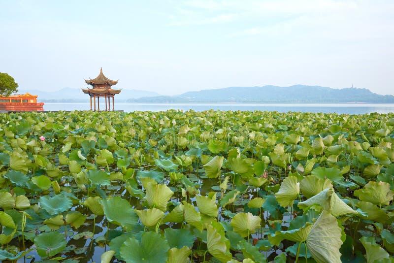 Lago del oeste hangzhou, Zhejiang, China imagen de archivo