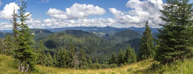 Lago della montagna di panorama circondato dagli pelliccia-alberi immagine stock libera da diritti